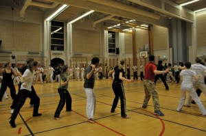 capoeira-meeting-copenhagen-2010-0336